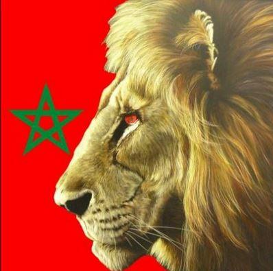 les-lions